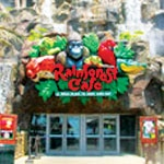 Rainforest Café